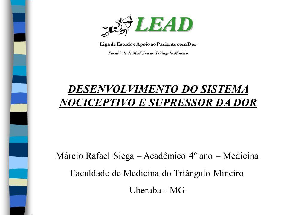 DESENVOLVIMENTO DO SISTEMA NOCICEPTIVO E SUPRESSOR DA DOR