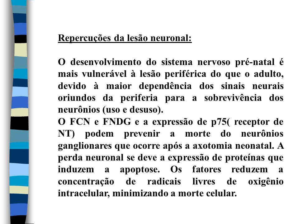 Repercuções da lesão neuronal: