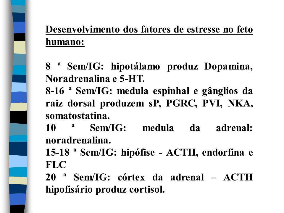 Desenvolvimento dos fatores de estresse no feto humano: