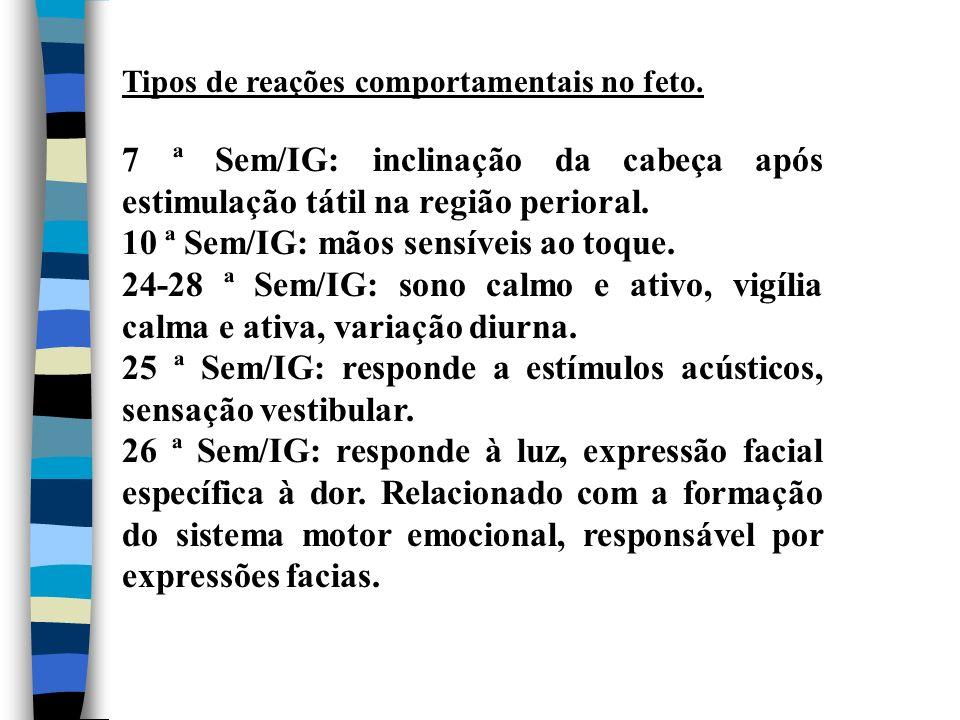 10 ª Sem/IG: mãos sensíveis ao toque.