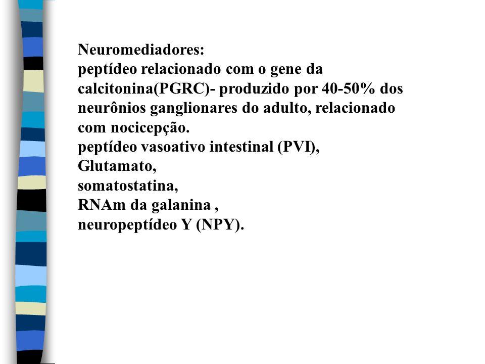 Neuromediadores: