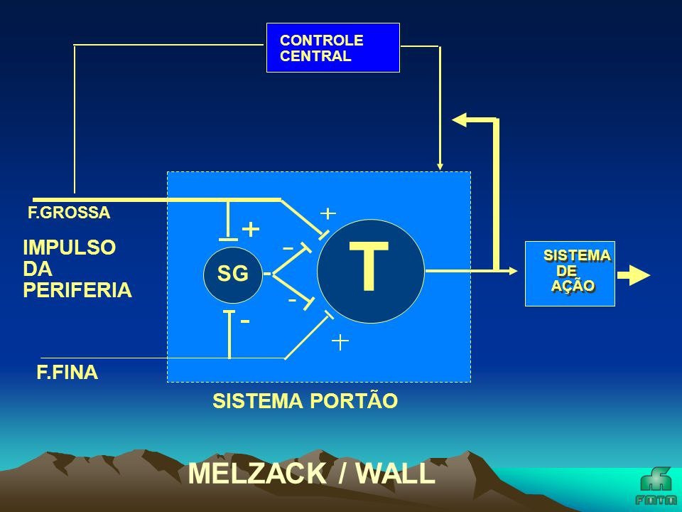 T MELZACK / WALL SG IMPULSO DA PERIFERIA SISTEMA PORTÃO F.FINA