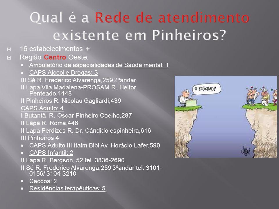 Qual é a Rede de atendimento existente em Pinheiros