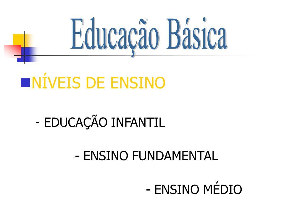 NÍVEIS DE ENSINO Educação Básica - EDUCAÇÃO INFANTIL