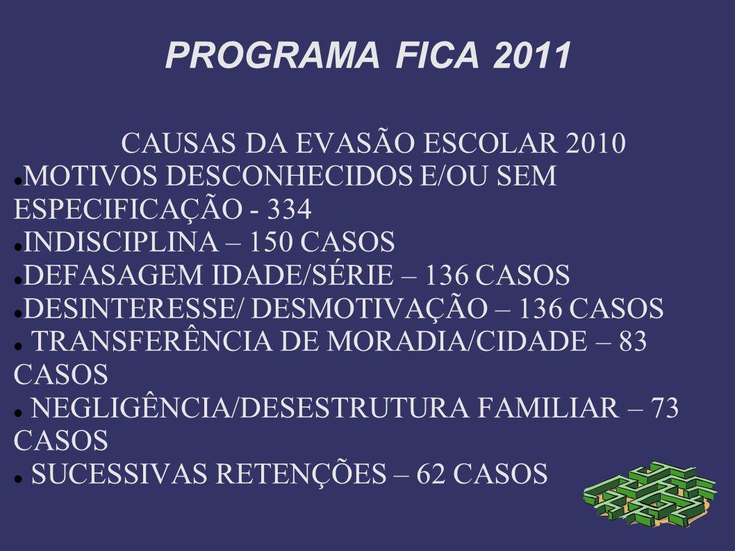 CAUSAS DA EVASÃO ESCOLAR 2010