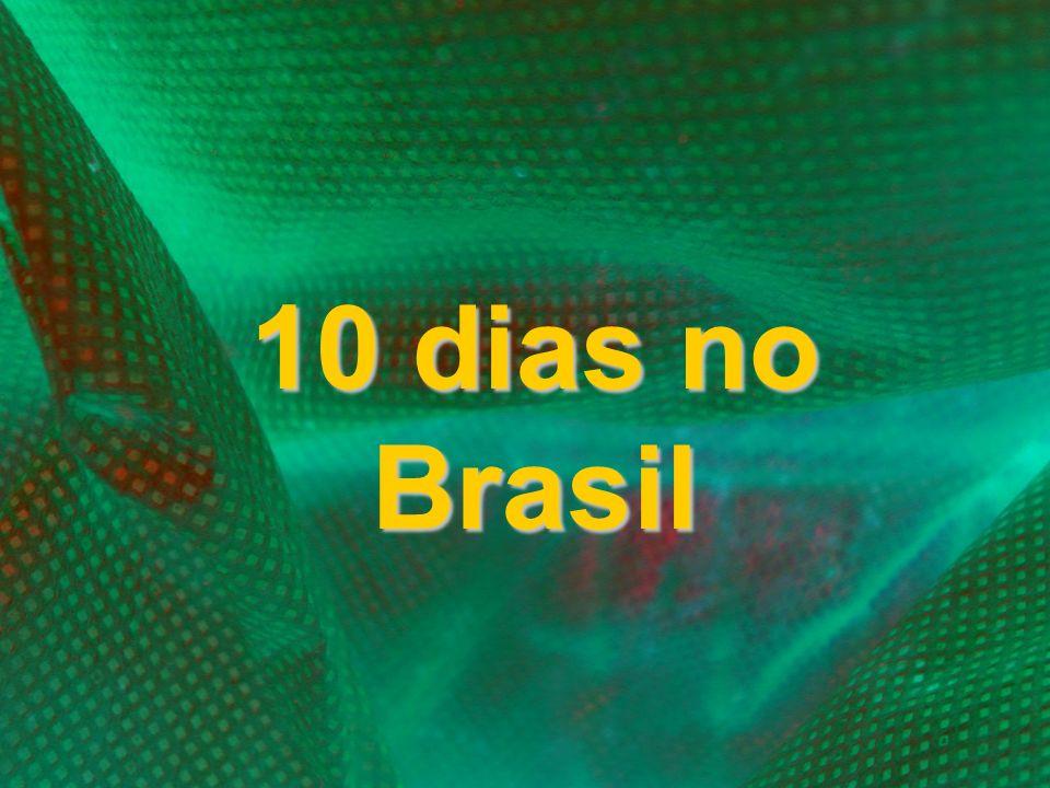 10 dias no Brasil