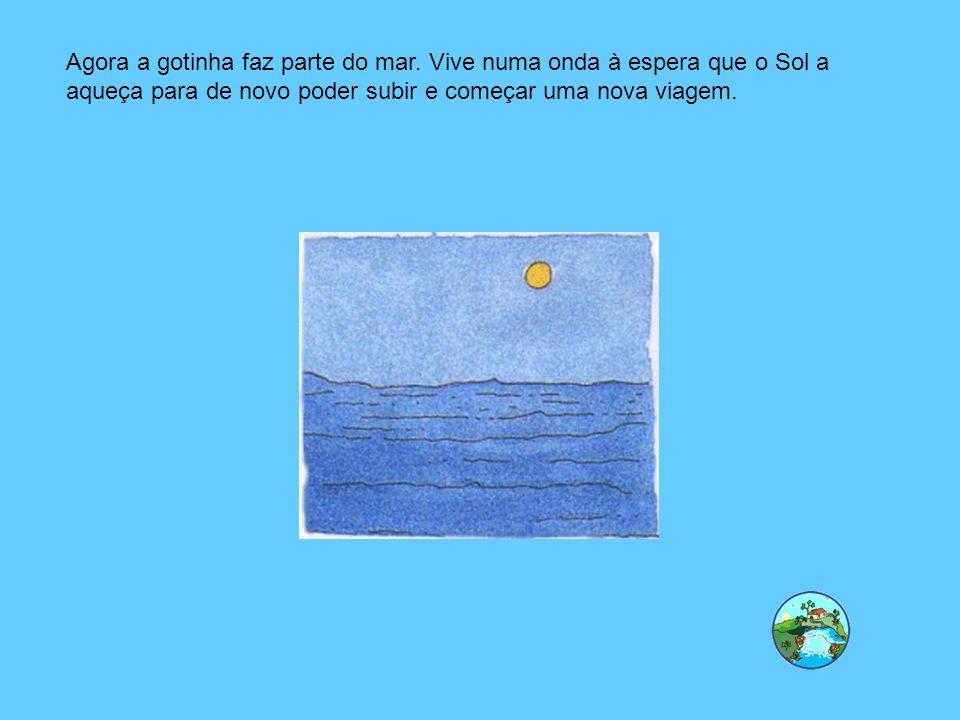 Agora a gotinha faz parte do mar