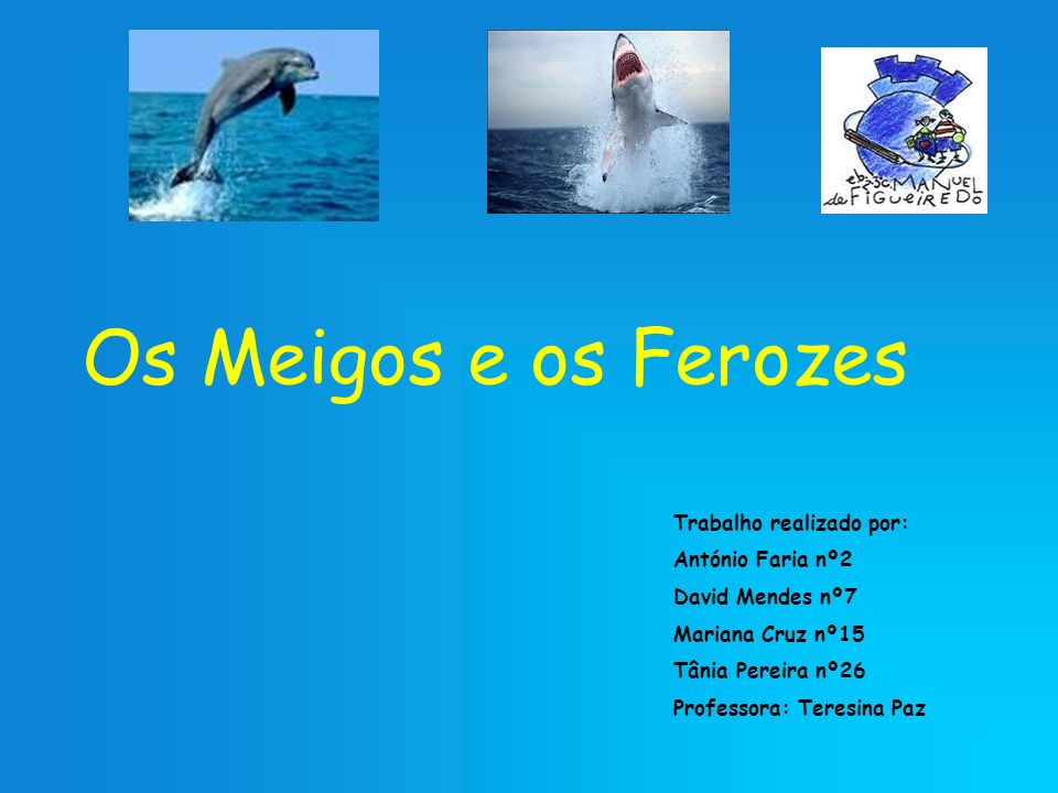 Os Meigos e os Ferozes Trabalho realizado por: António Faria nº2