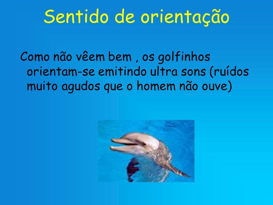 Sentido de orientação Como não vêem bem , os golfinhos orientam-se emitindo ultra sons (ruídos muito agudos que o homem não ouve)