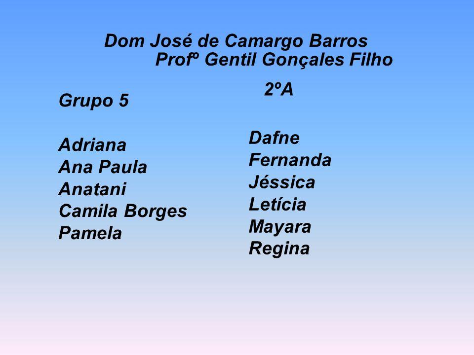 Dom José de Camargo Barros