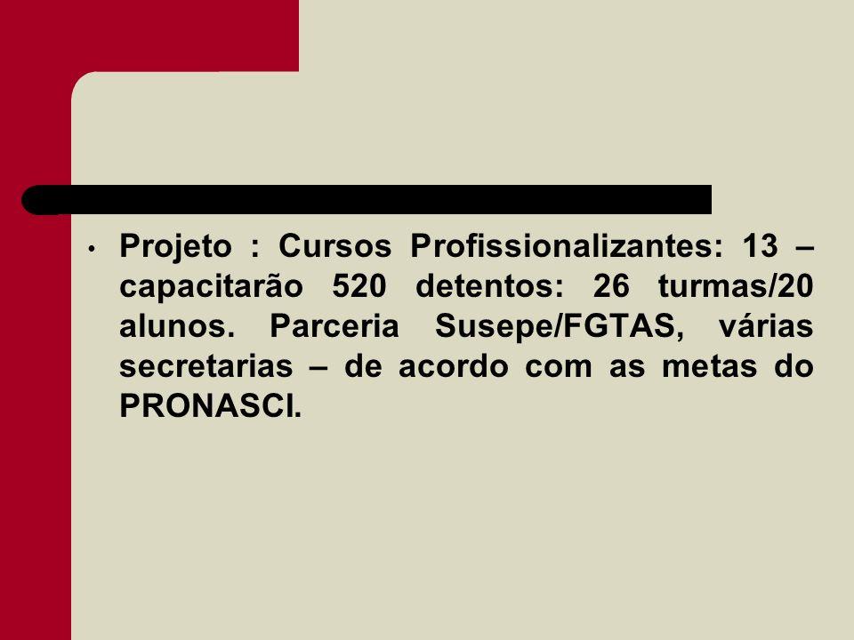 Projeto : Cursos Profissionalizantes: 13 – capacitarão 520 detentos: 26 turmas/20 alunos.