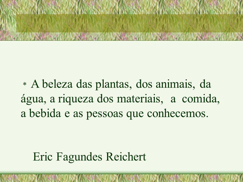 Eric Fagundes Reichert
