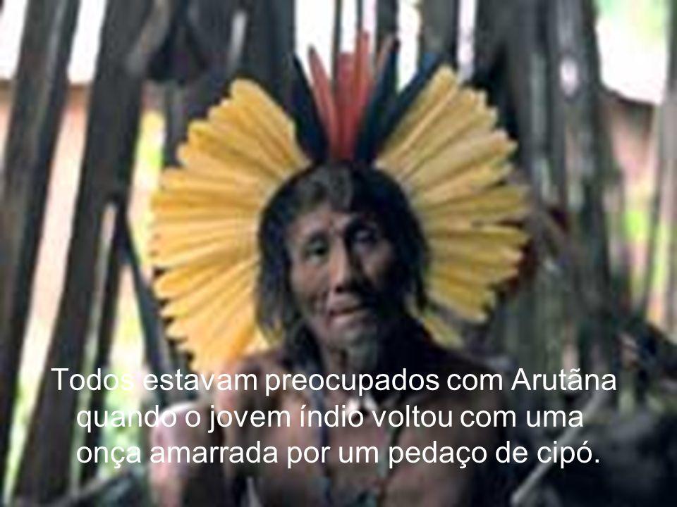 Todos estavam preocupados com Arutãna quando o jovem índio voltou com uma onça amarrada por um pedaço de cipó.