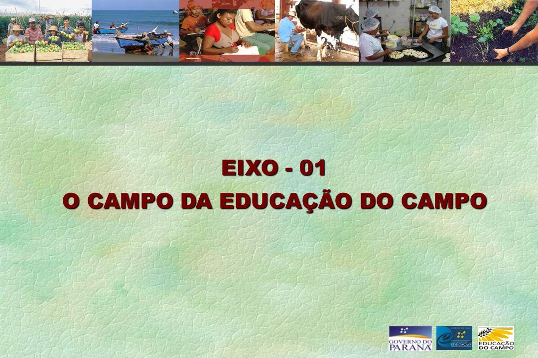 O CAMPO DA EDUCAÇÃO DO CAMPO