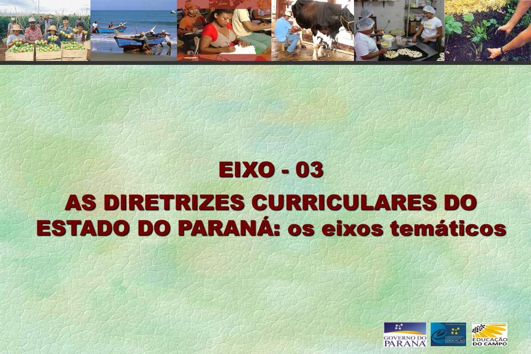 AS DIRETRIZES CURRICULARES DO ESTADO DO PARANÁ: os eixos temáticos