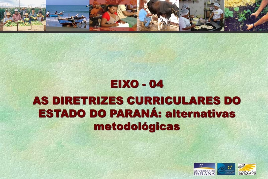 EIXO - 04 AS DIRETRIZES CURRICULARES DO ESTADO DO PARANÁ: alternativas metodológicas