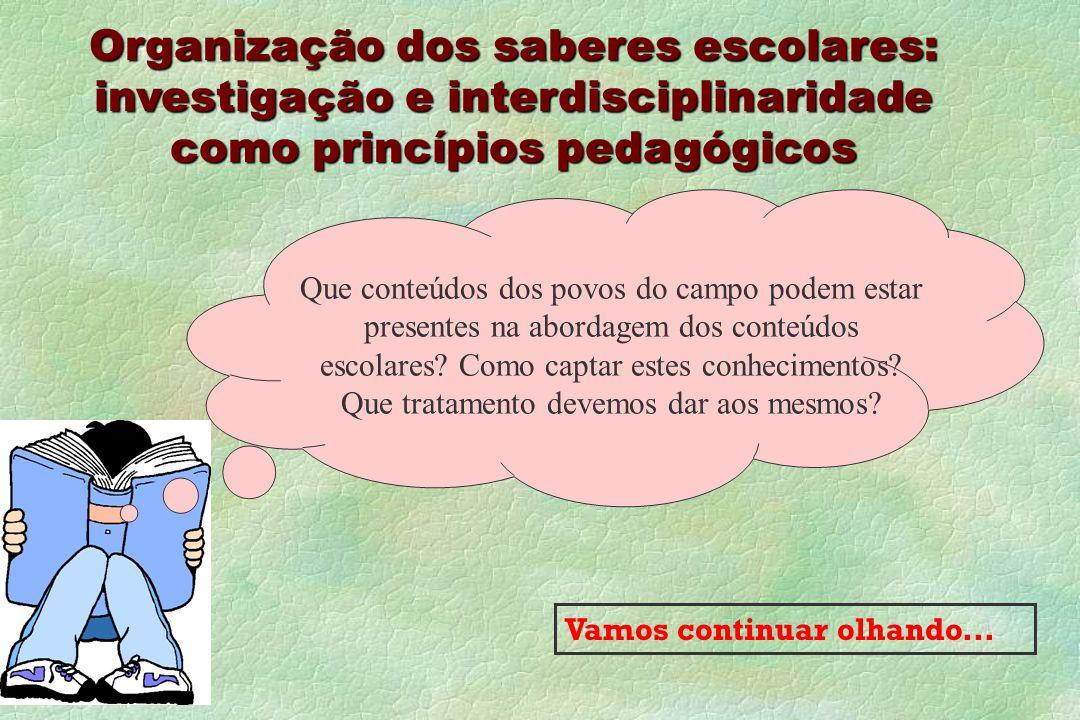 Organização dos saberes escolares: investigação e interdisciplinaridade como princípios pedagógicos