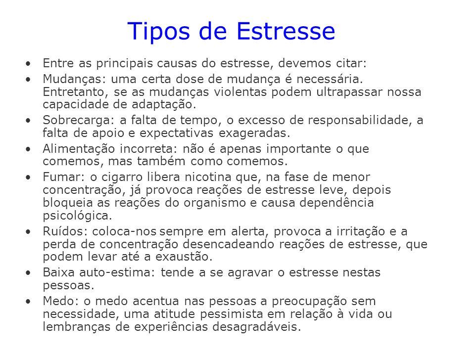Tipos de EstresseEntre as principais causas do estresse, devemos citar: