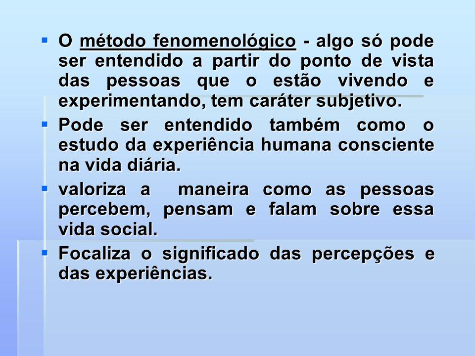 O método fenomenológico - algo só pode ser entendido a partir do ponto de vista das pessoas que o estão vivendo e experimentando, tem caráter subjetivo.