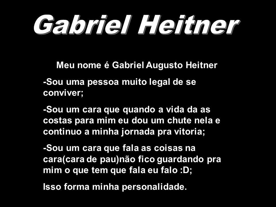 Meu nome é Gabriel Augusto Heitner