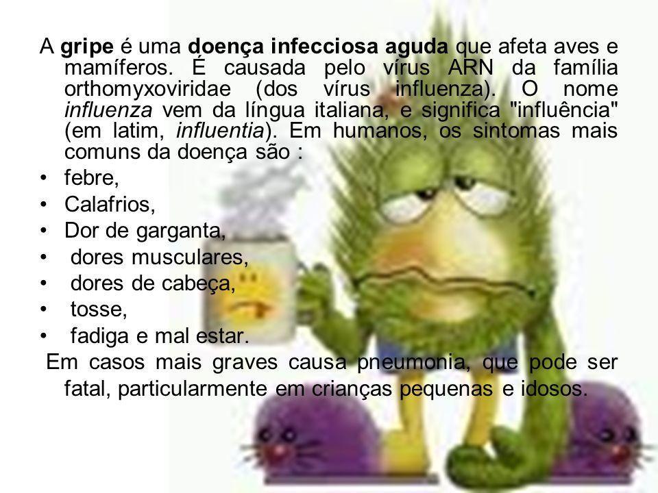 A gripe é uma doença infecciosa aguda que afeta aves e mamíferos