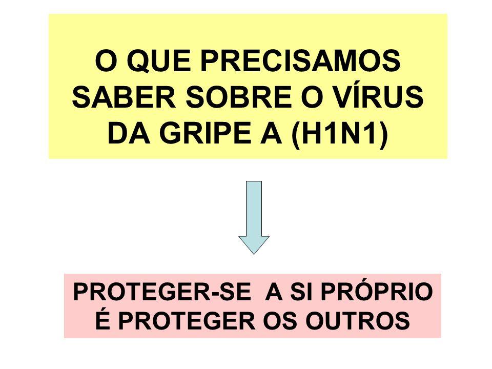 O QUE PRECISAMOS SABER SOBRE O VÍRUS DA GRIPE A (H1N1)