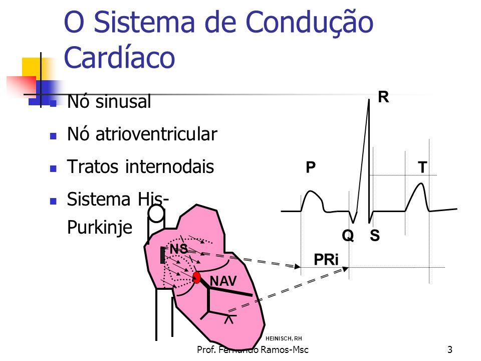 O Sistema de Condução Cardíaco