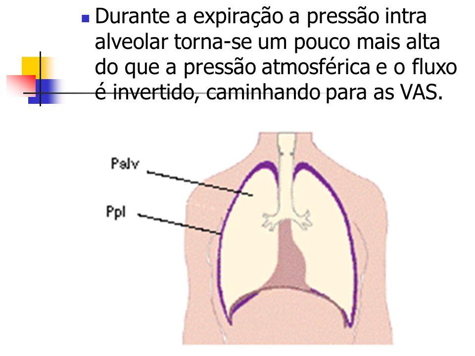 Durante a expiração a pressão intra alveolar torna-se um pouco mais alta do que a pressão atmosférica e o fluxo é invertido, caminhando para as VAS.