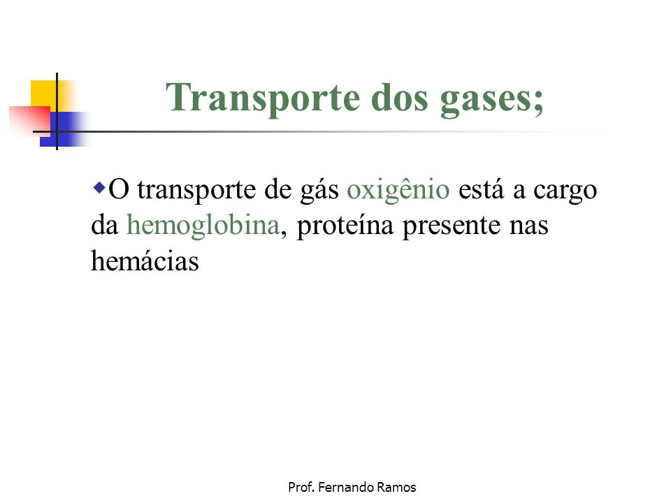 Transporte dos gases; O transporte de gás oxigênio está a cargo da hemoglobina, proteína presente nas hemácias.