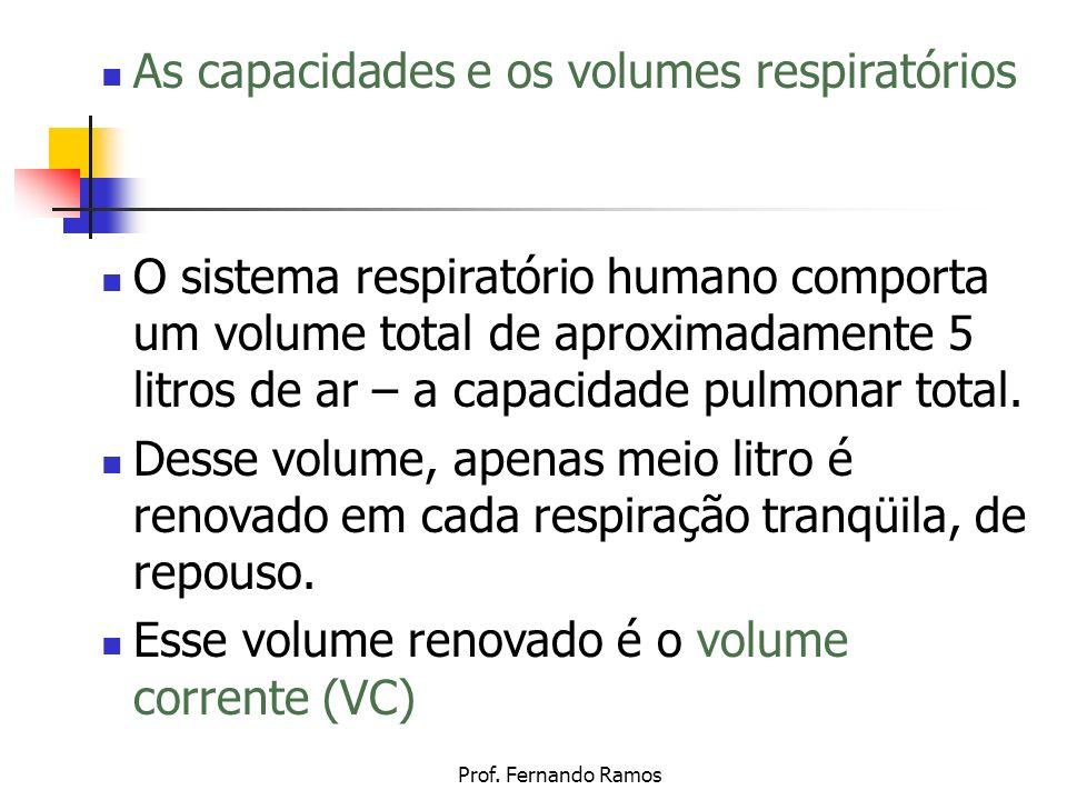 As capacidades e os volumes respiratórios