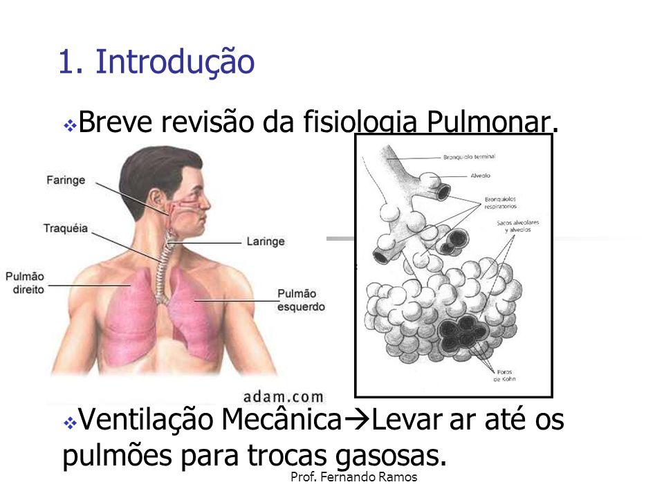 1. Introdução Breve revisão da fisiologia Pulmonar.