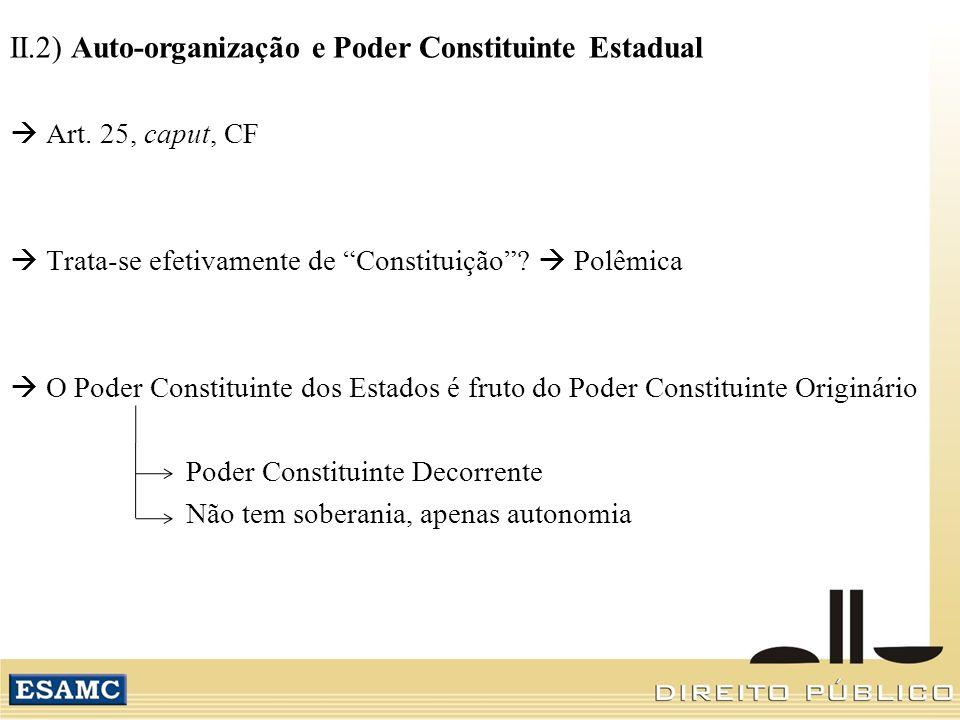 II.2) Auto-organização e Poder Constituinte Estadual