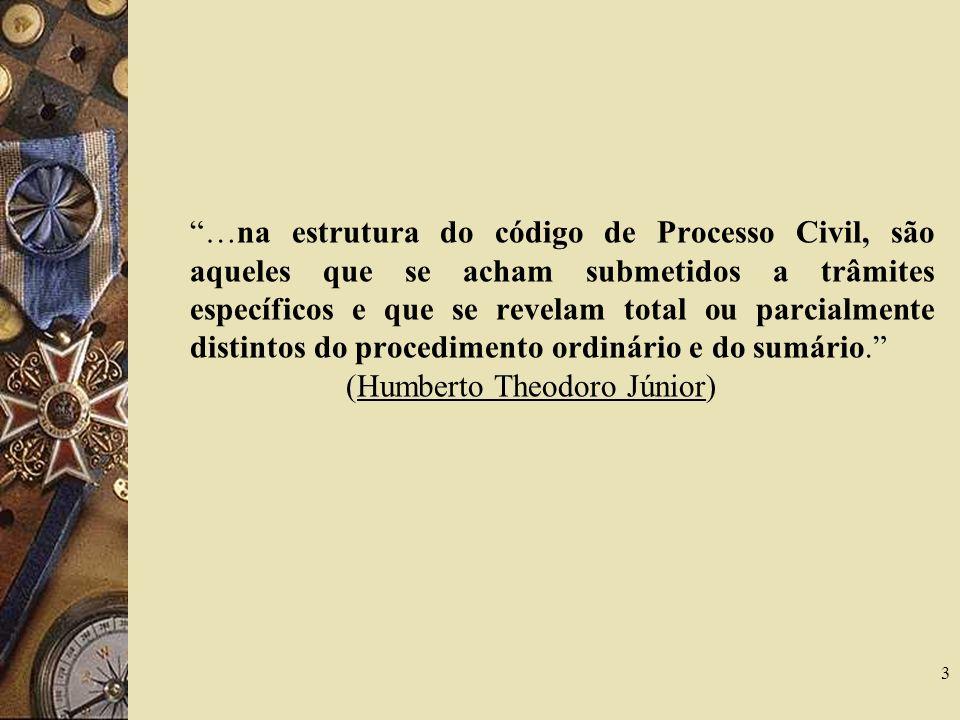 …na estrutura do código de Processo Civil, são aqueles que se acham submetidos a trâmites específicos e que se revelam total ou parcialmente distintos do procedimento ordinário e do sumário. (Humberto Theodoro Júnior)