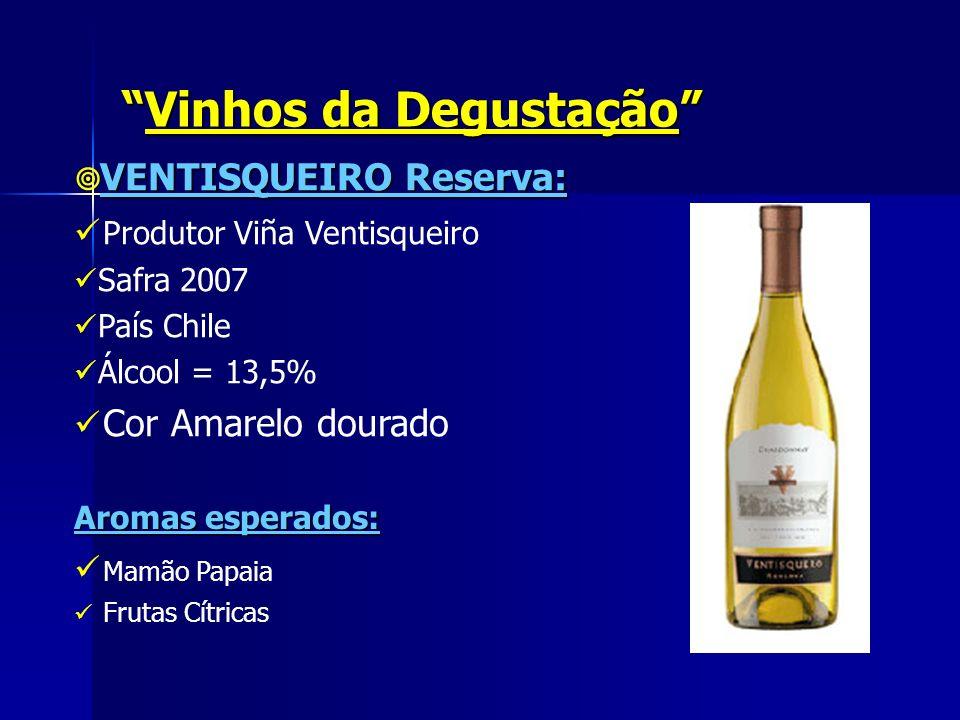 Vinhos da Degustação
