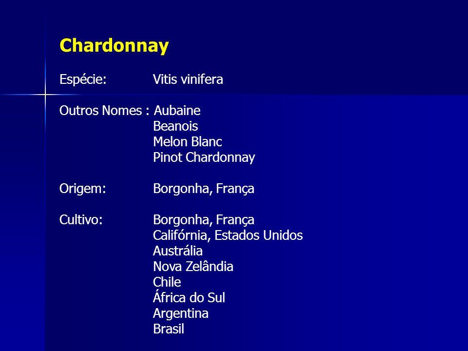 Chardonnay Espécie: Vitis vinifera Outros Nomes : Aubaine Beanois