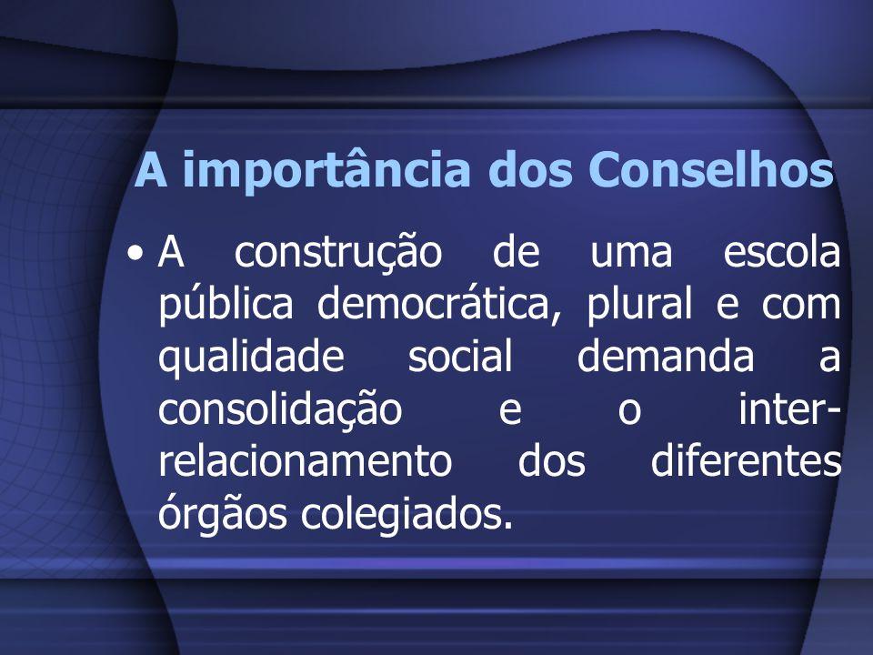 A importância dos Conselhos