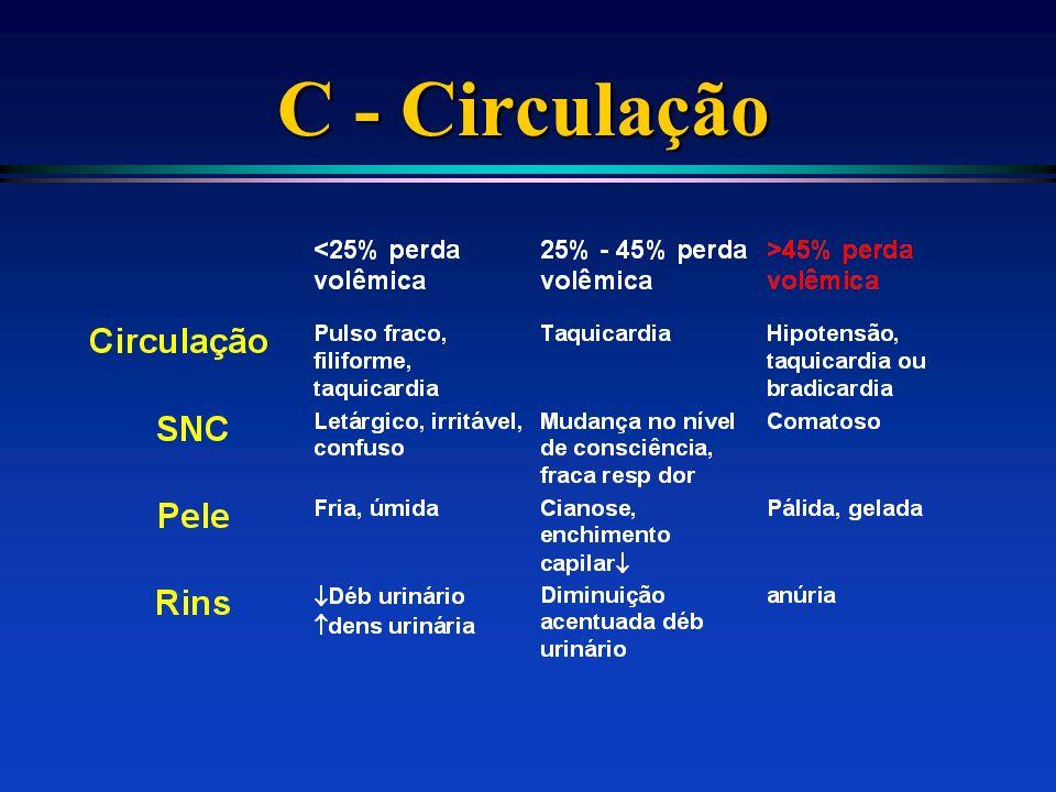 C - Circulação