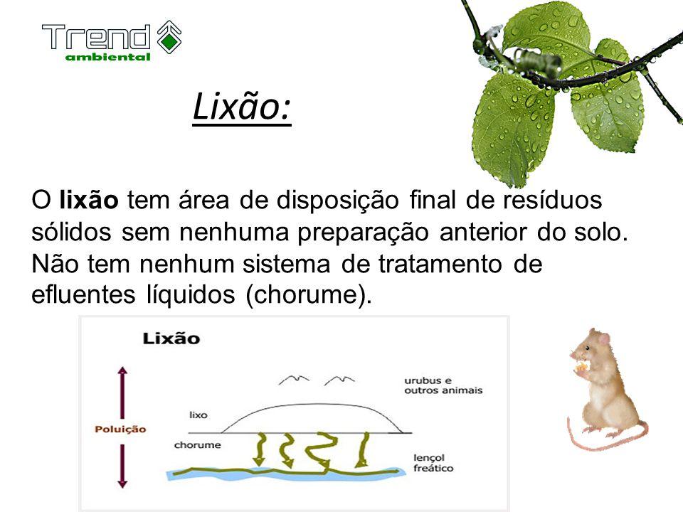 Lixão: