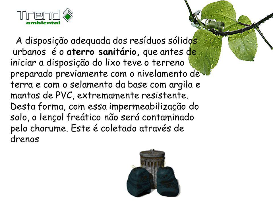 A disposição adequada dos resíduos sólidos