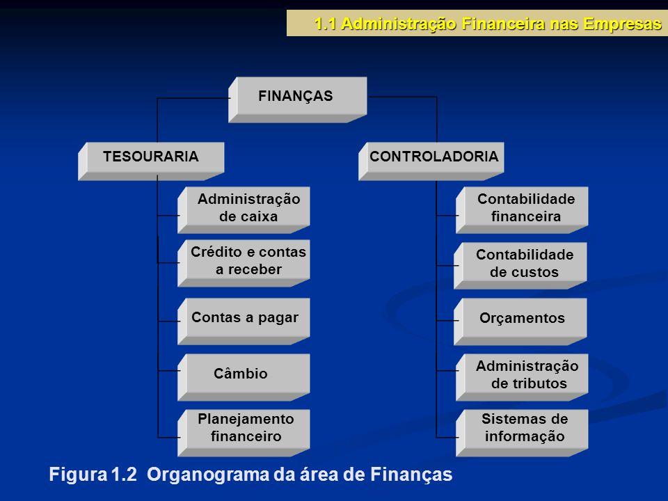 Figura 1.2 Organograma da área de Finanças