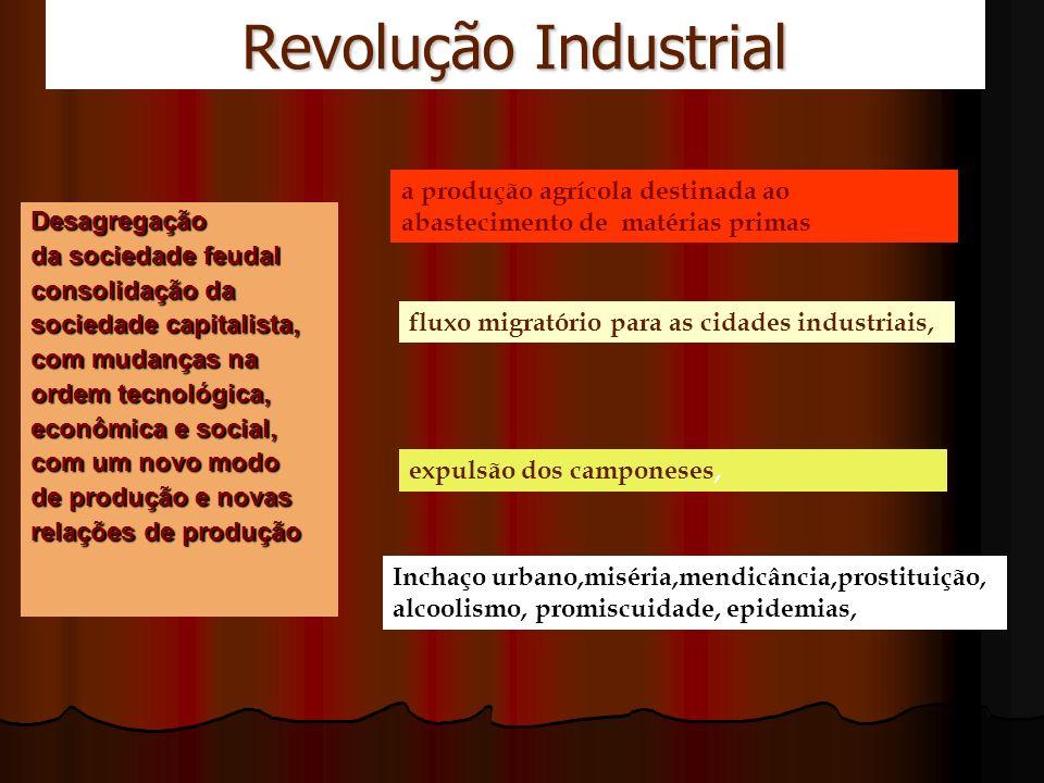 Revolução Industrial a produção agrícola destinada ao abastecimento de matérias primas. Desagregação.