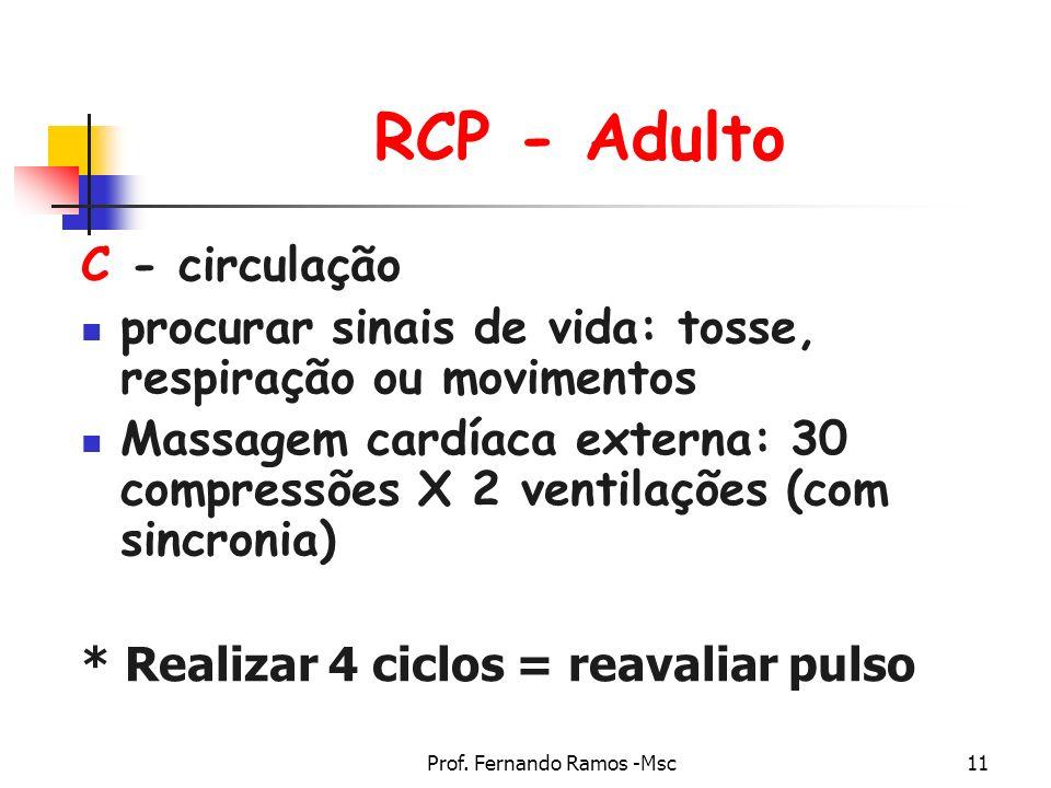 Prof. Fernando Ramos -Msc