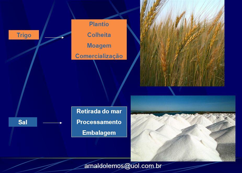 Plantio Colheita Moagem Comercialização Trigo Retirada do mar Processamento Embalagem Sal
