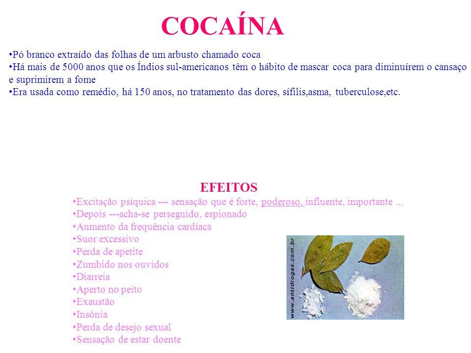 COCAÍNAPó branco extraído das folhas de um arbusto chamado coca.