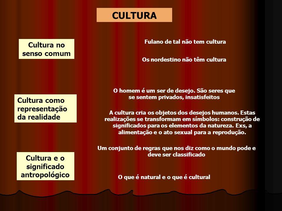 CULTURA Cultura no senso comum Cultura como representação da realidade