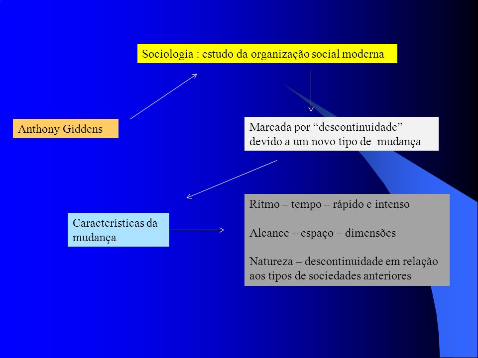 Sociologia : estudo da organização social moderna