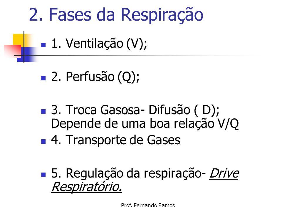 2. Fases da Respiração 1. Ventilação (V); 2. Perfusão (Q);