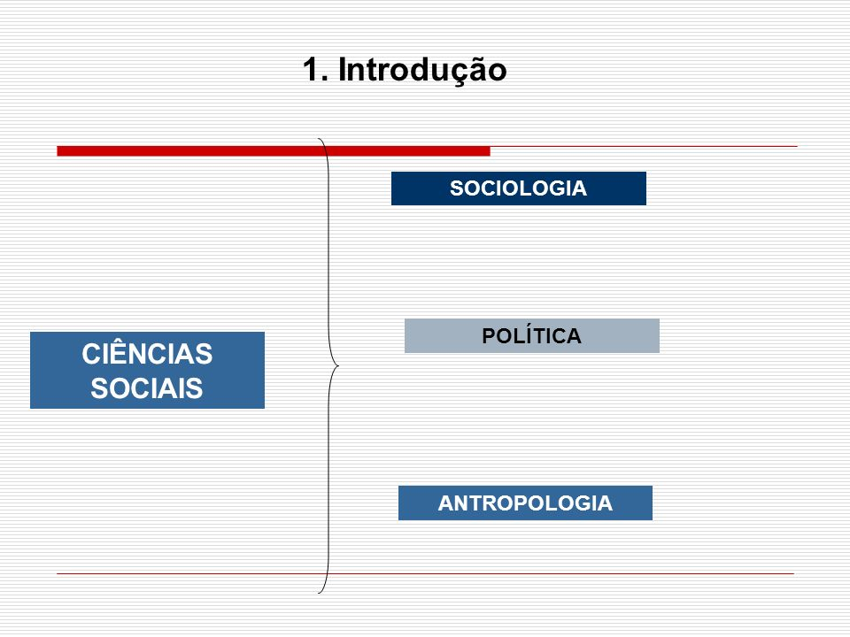 1. Introdução SOCIOLOGIA POLÍTICA CIÊNCIAS SOCIAIS ANTROPOLOGIA