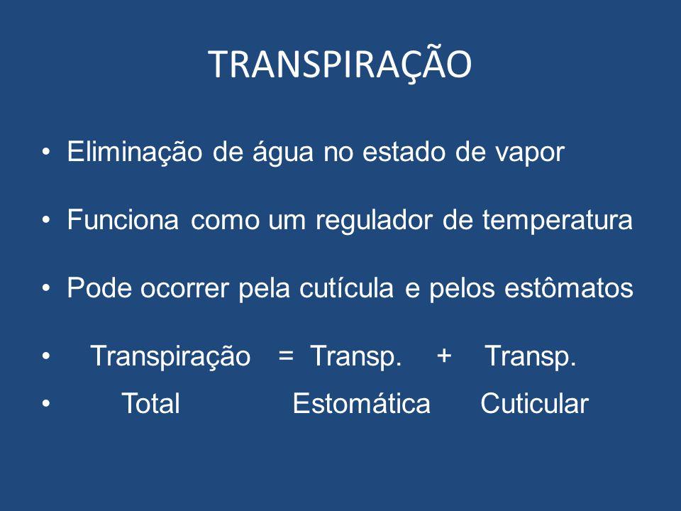 TRANSPIRAÇÃO Eliminação de água no estado de vapor