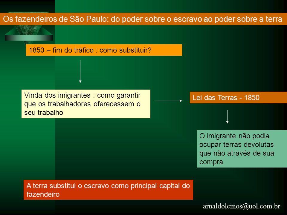 Os fazendeiros de São Paulo: do poder sobre o escravo ao poder sobre a terra